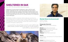 Sheltered In Oak Thumb